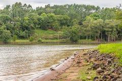 Alberi nel lago Garibaldi in Encantado Fotografia Stock Libera da Diritti