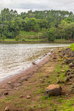 Alberi nel lago Garibaldi in Encantado Fotografia Stock