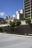 Alberi nella città Fotografia Stock Libera da Diritti
