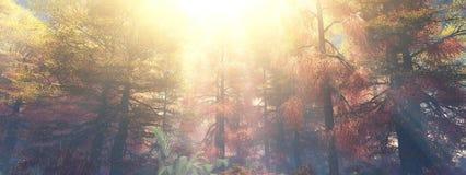 Alberi nella nebbia Foresta di autunno nella nebbia Fotografia Stock