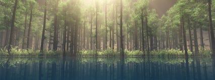 Alberi nella nebbia Il fumo nella foresta Fotografie Stock Libere da Diritti