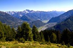 Alberi nelle montagne Fotografia Stock