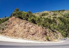 Alberi nelle montagne Fotografie Stock Libere da Diritti