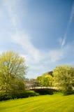 Alberi, nubi e springday Fotografia Stock