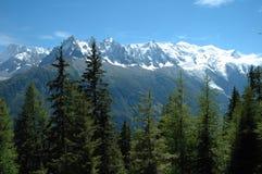 Alberi, picchi e Mont Blanc Chamonix-Mont-Blanc vicina in alpi in Francia Immagini Stock Libere da Diritti