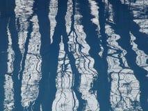 Alberi riflessi sull'acqua Fotografie Stock Libere da Diritti