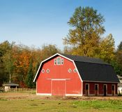 Alberi rossi di autunno e del granaio Immagine Stock Libera da Diritti