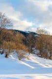 Alberi senza foglie nella parte anteriore della neve Vista delle montagne di inverno Immagini Stock