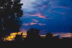 Alberi su nuvoloso con il cielo alla siluetta del fondo di sera Immagini Stock Libere da Diritti