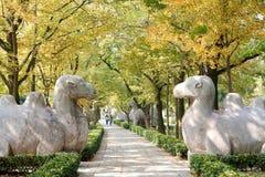 Alberi sul marciapiede con la statua animale di pietra Immagini Stock