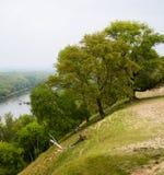 Alberi sulla banca di fiume ripida Fotografia Stock