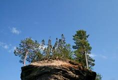 Alberi sulla roccia Immagini Stock Libere da Diritti