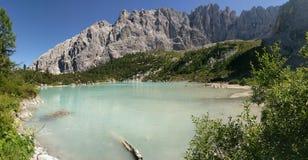 Alberi sulle banche del lago Sorapis in dolomia, Italia Fotografie Stock Libere da Diritti