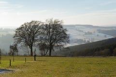 2 alberi in valle Fotografie Stock Libere da Diritti