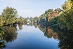 Alberi variopinti alle banche di un fiume Immagine Stock