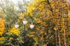 Alberi variopinti in autunno ed alcune lampade di via Immagini Stock Libere da Diritti
