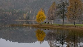 Alberi variopinti di autunno nel lago immagini stock