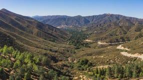 Alberi verdi che crescono in valle del deserto fotografia stock libera da diritti