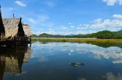 Alberi verdi dal lago un giorno pieno di sole Fotografie Stock