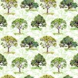 Alberi verdi Parco, foresta che ripete modello Priorità bassa con i fogli verdi watercolor Fotografia Stock Libera da Diritti