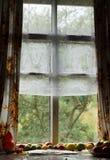 Alberi verdi visti attraverso la vecchia finestra bugia dei pomodori vicino ad una finestra Fotografia Stock
