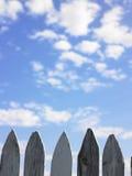 Alberini di legno della rete fissa fotografie stock libere da diritti