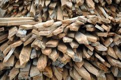 Alberini di legno della rete fissa immagine stock