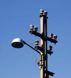 Alberino della lampada Fotografia Stock