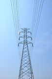 Alberino di elettricità Fotografia Stock