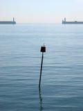 Alberino di marea Fotografie Stock