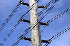 Alberino elettrico Immagine Stock Libera da Diritti