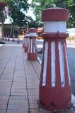 Alberino rosso e bianco fotografie stock