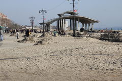 Alberino Sandy della spiaggia di Brighton Immagini Stock Libere da Diritti