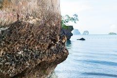 Albern Sie auf einem Felsen auf dem Strand in Thailand herum Lizenzfreie Stockfotos