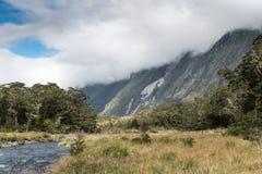 Albern Sie Nebenflusslandschaft in Nationalpark Fiordland, Neuseeland herum Lizenzfreie Stockfotografie