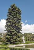 Albero accanto ad una statua Immagini Stock Libere da Diritti
