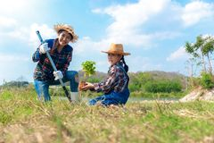 Albero asiatico dell'alberello delle piante della ragazza del bambino e della mamma nella molla della natura per ridurre la carat immagini stock