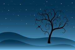 Albero astratto con le stelle alla notte Fotografia Stock Libera da Diritti