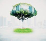 Albero astratto con paesaggio urbano Fotografia Stock Libera da Diritti