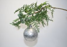 Albero attillato sempreverde di Natale e una palla d'argento con Santa Claus Immagine Stock
