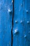 Albero blu Fotografie Stock Libere da Diritti