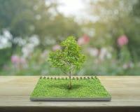 Albero che cresce da un libro aperto, concetto ecologico fotografie stock