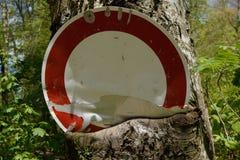 Albero che mangia segnale stradale fotografie stock libere da diritti