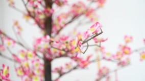 Albero cinese del fiore della decorazione del nuovo anno stock footage