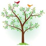 Albero con gli uccelli Fotografia Stock Libera da Diritti