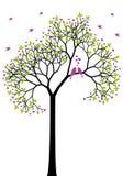 Albero con gli uccelli di amore, vettore della sorgente Immagini Stock