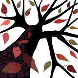 Albero con i fogli caduta/di autunno Fotografia Stock Libera da Diritti