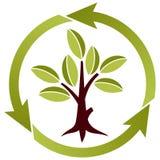 Albero con i fogli ed il simbolo di riciclaggio Immagine Stock