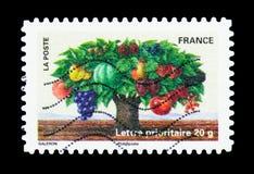 Albero con i frutti differenti, serie delle piante (flora), circa 2011 Immagini Stock Libere da Diritti