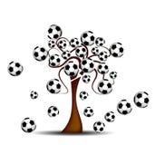 Albero con i giochi del calcio Fotografia Stock Libera da Diritti